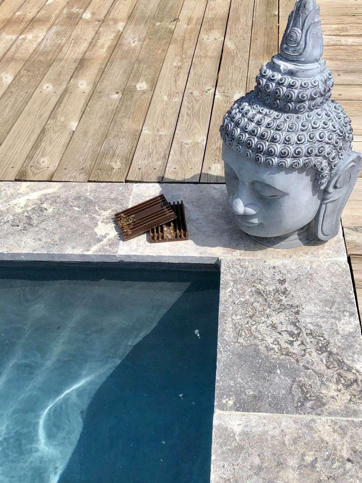 filtre biologique Water Cleanser piscine